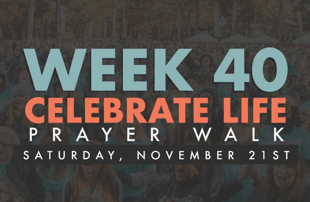 Love Life Week 40 Prayer Walk